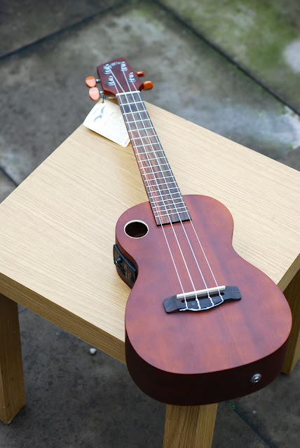 Riptide EUC-5NS concert ukulele