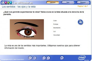 http://wikisaber.es/Contenidos/LObjects/eyes_and_seeing/index.html