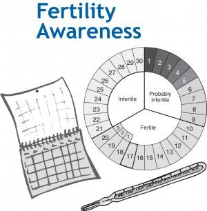 alat penghitung masa subur wanita setelah haid menstruasi