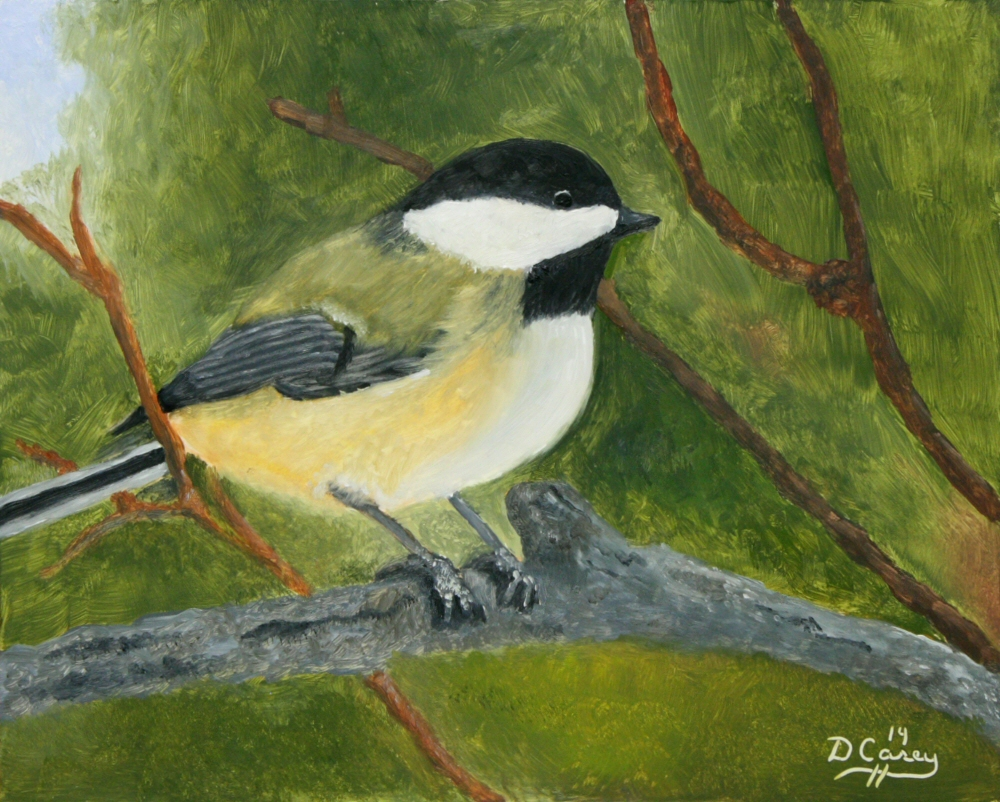 141130 - Chickadee 001a 8x10 oil on wood panel - Dave Casey - TheDailyPainter.jpg