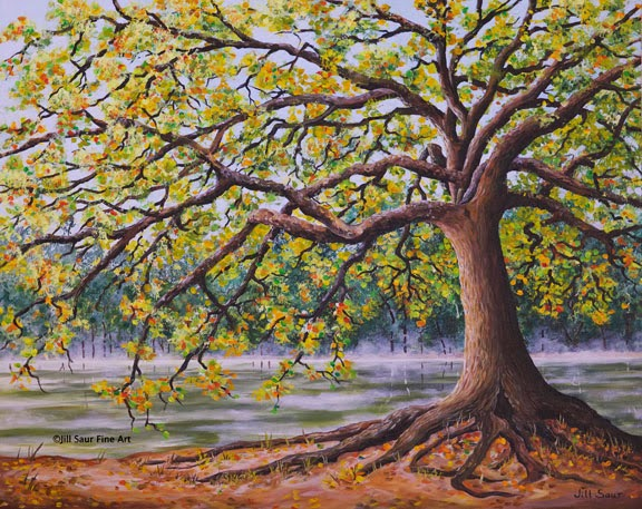 oak tree river art