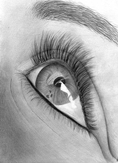 Gallery For > Eyes ...Eyes Looking Up Drawing