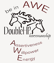 Be in AWE - DoubleHP's horsemanship program
