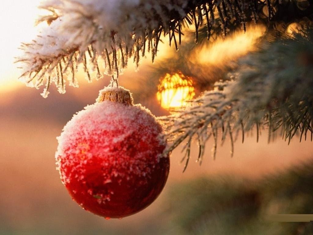 Wonderful Wallpaper Mac Christmas - Frozen-Christmas-Mac-Wallpapers-1-1  Gallery_435758.jpg