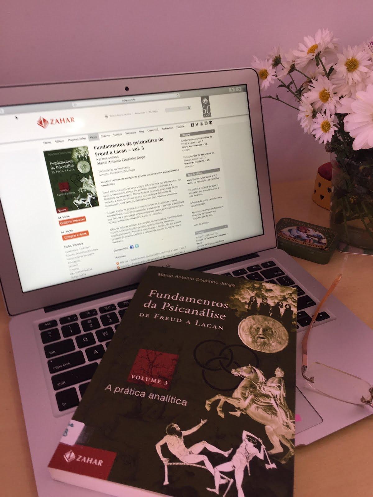 FUNDAMENTOS DA PSICANÁLISE - Vl. 3 - A prática analítica