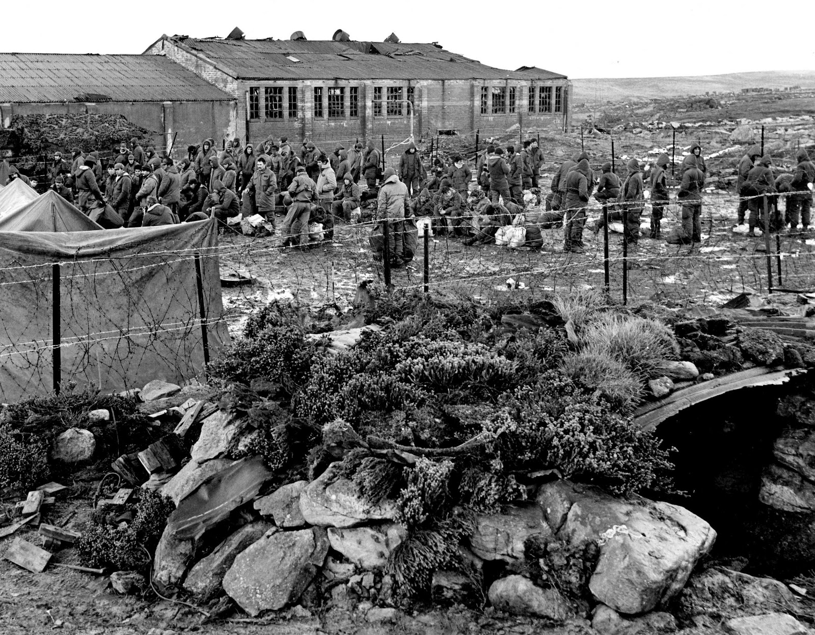 a history of war in falkland islands The falklands war was by far the largest and most extended series of naval  on  the falklands (which it calls the malvinas islands) was based on sheer  and had  been part of public school history curricula for generations.