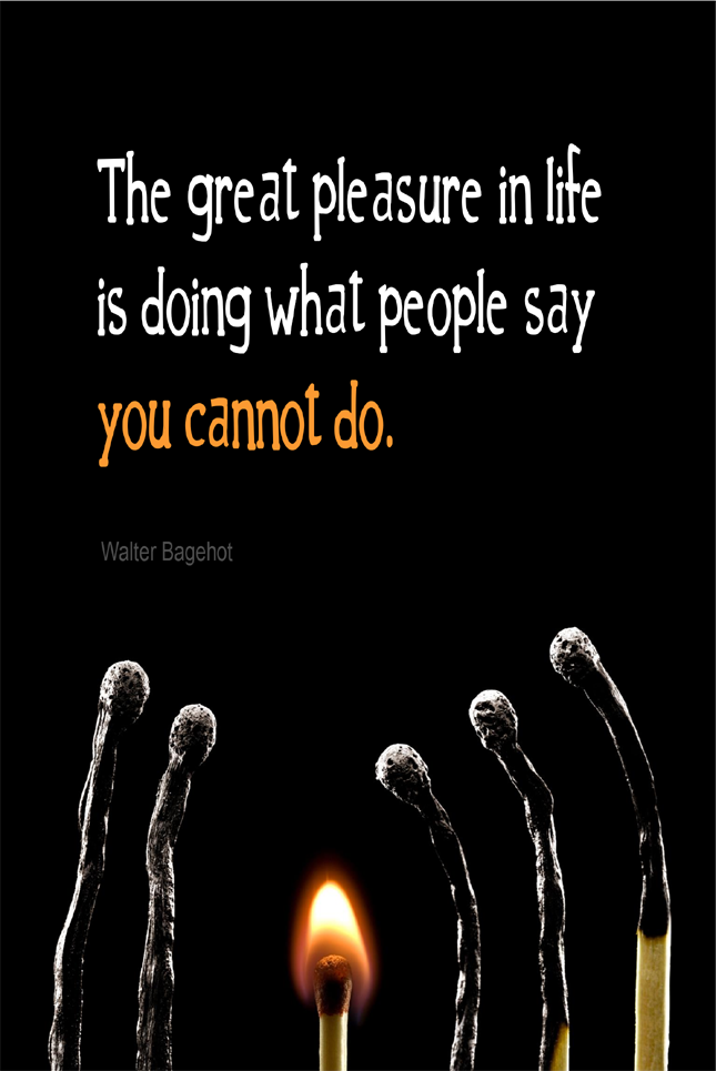 visual quote - image quotation for LIFE - The great pleasure in life is doing what people say you cannot do. - Walter Bagehot