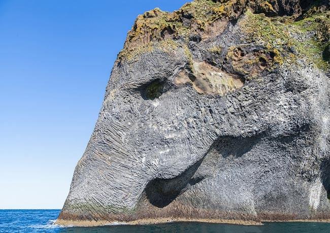 ¿Elefante o acantilado?