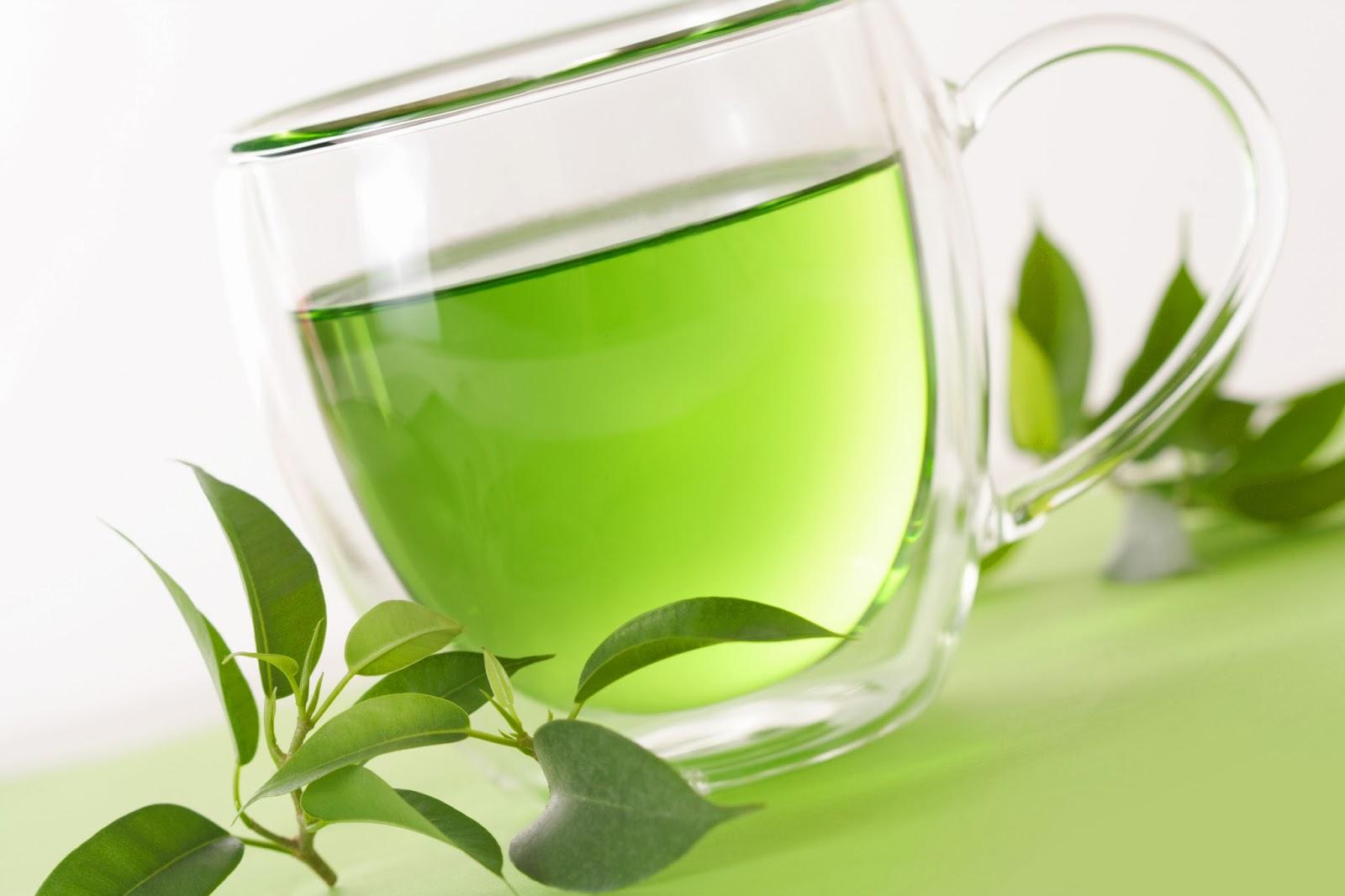 Extracto de té verde aumenta el metabolismo