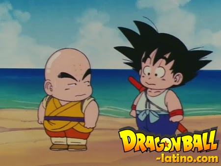 Dragon Ball capitulo 14