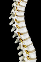 Chiropractor Anchorage