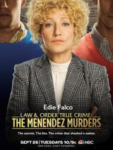 Law & Order True Crime Poster