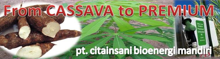 from CASSAVA  to PREMIUM