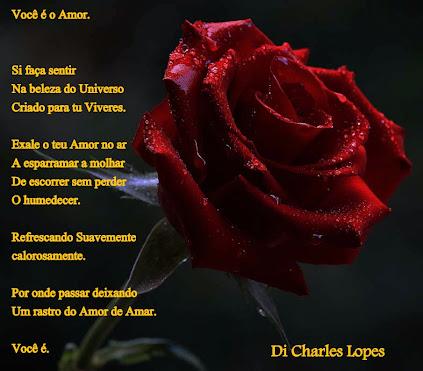 Poesia na fotografia (14)