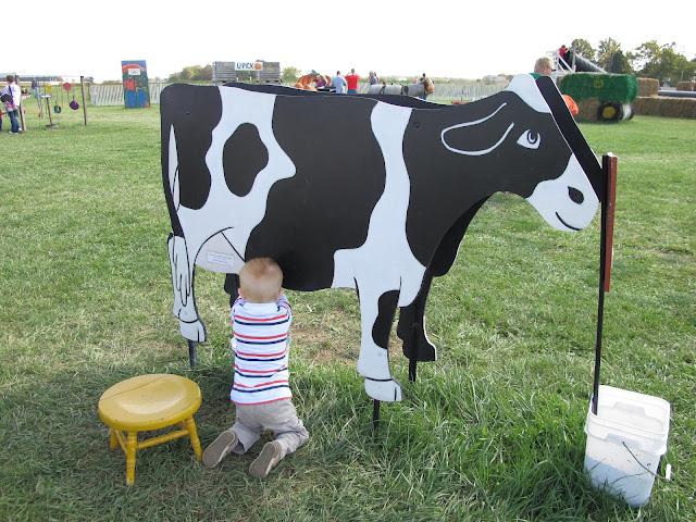 Porter's Cow Milking Adventure