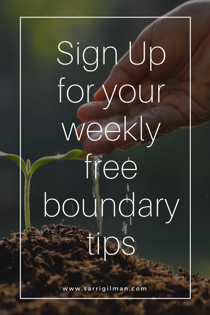 Click on image for your free boundary tips