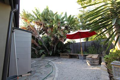 yard mid-century modern