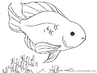 Blood Parrot Beautiful Tropical Fish Printable Coloring Pages