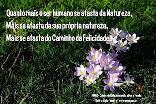 Caminho da Felicidade e a Natureza