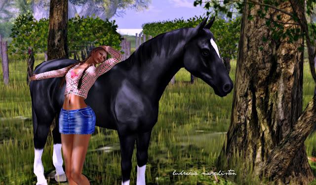 Horse In Latin The Latin sight of Luk...