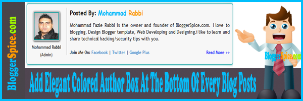 Blog Author box