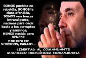 Campaña por la liberación de Mauricio Hernández Norambuena, Comándate Ramiro