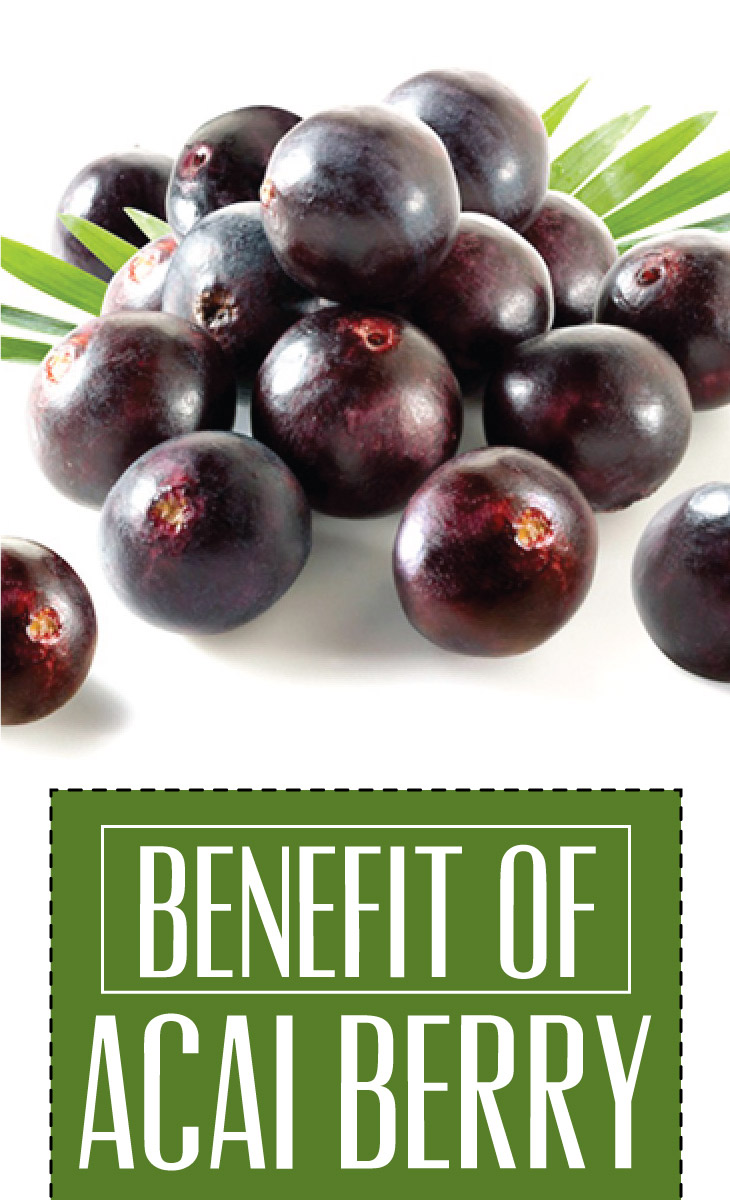 benefits of the acai berry The acai berry is also a rich source of protein and dietary fiber, in addition to high levels of both omega-6 and omega-9 fatty acids, thought to have a protective effect on the heart and in addition to these important benefits, the acai berry is thought to play a vital role in slowing down the aging process.