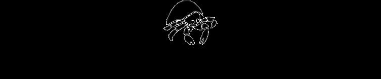 The Hermit Crab