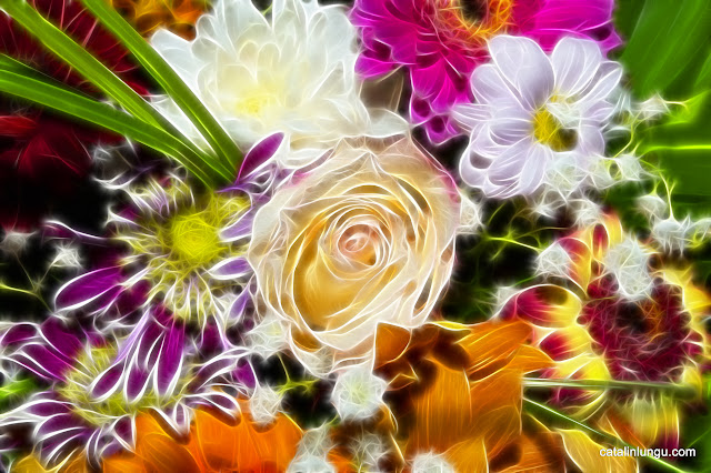 colorful bouquet - fractal flowers