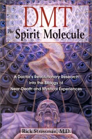 Consciousness Dmt_spirit_molecule