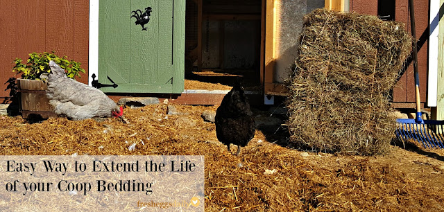 can you use straw for chicken bedding 1