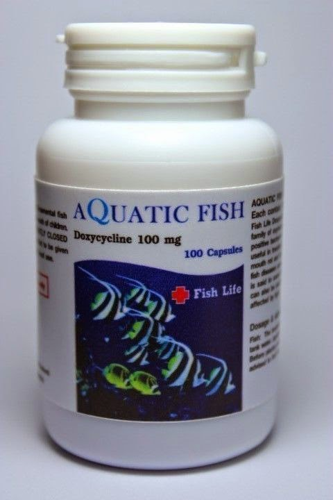 Terrierman 39 s daily dose big dollar savings on a drug that for Fish antibiotics doxycycline