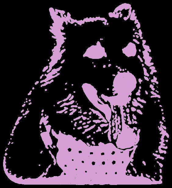 白犬(動物)