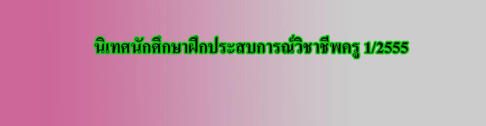 นิเทศนักศึกษาฝึกประสบการณ์วิชาชีพครู 1/2555