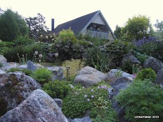 Alpiner, trädgård