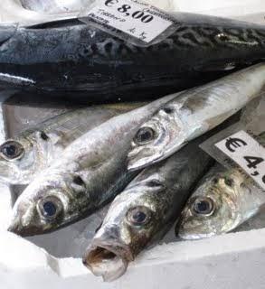 Al mercato – pesce in pescheria window in Amalfi.