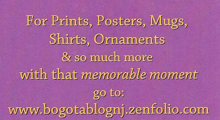 Zenfolio Store