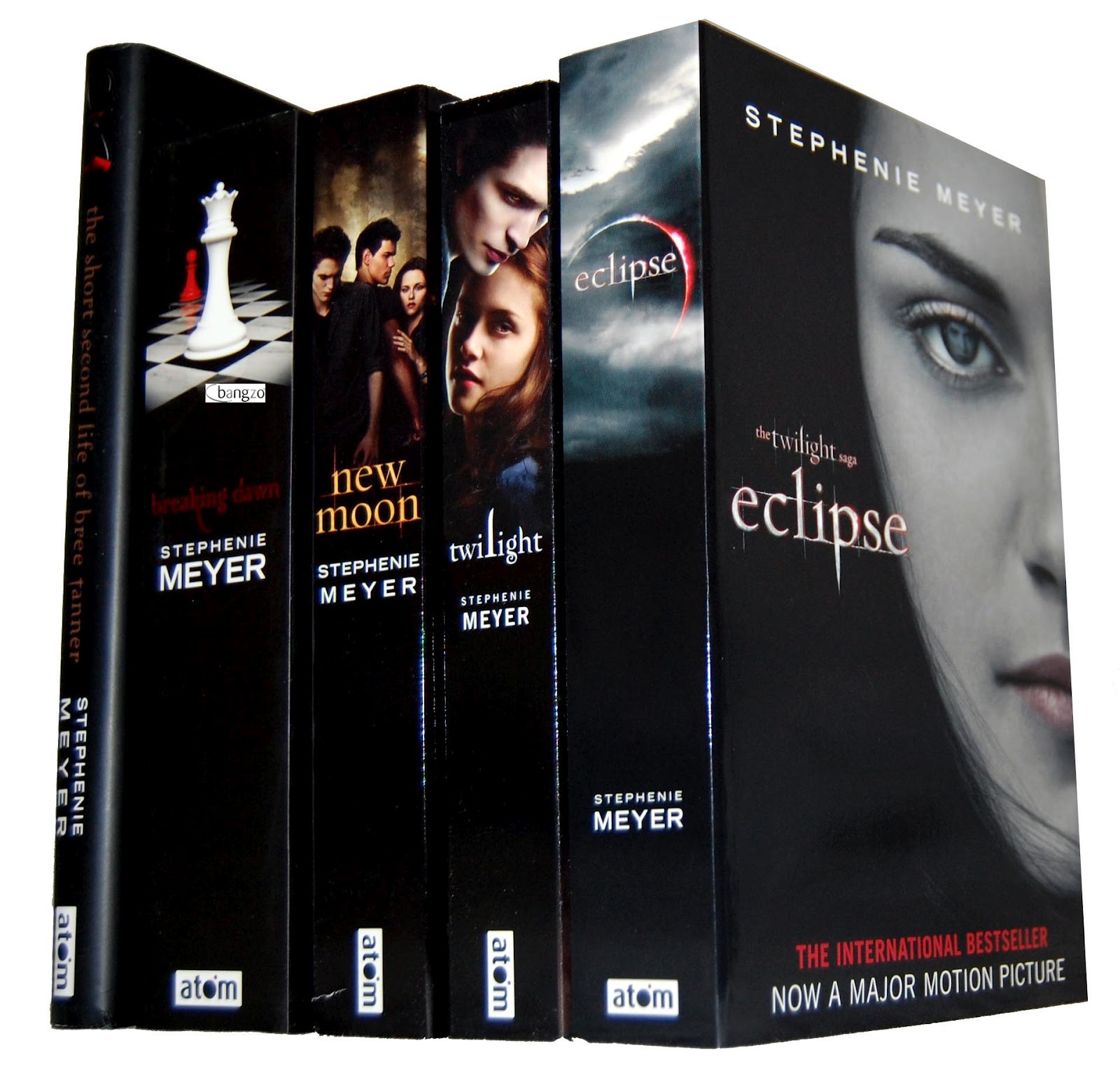 Twilight Saga Book Set