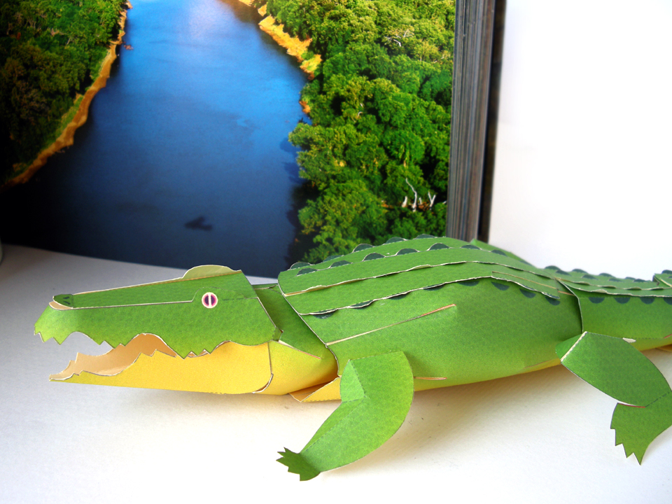 Our weekend project with the nephew a paper crocodile seemed more difficult than it actually was once you get the general idea then you simply keep going