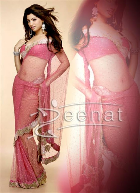 Traditional saree Blouse Designs 2012