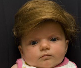 Yes you bet your combover it's The Donald baby wig !