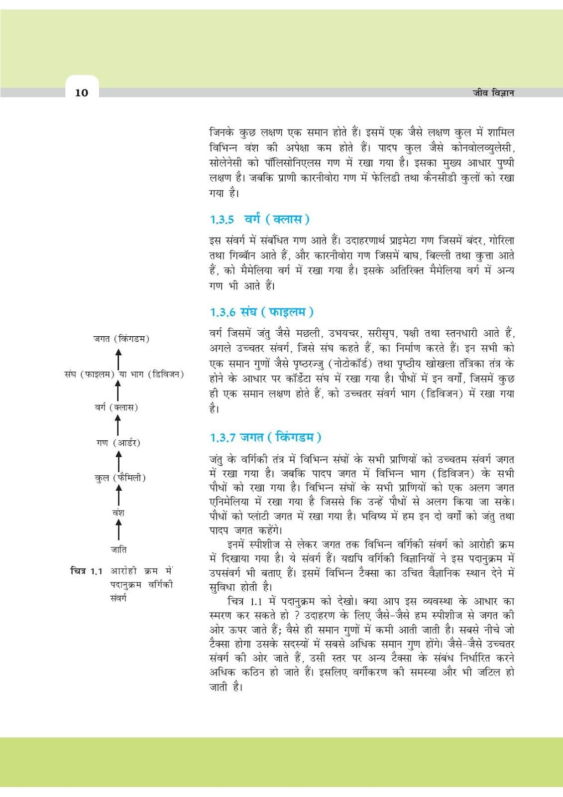 ncert biology Ncert xi biology notes and solutions december 10, 2014  ncert xi biology notes and answers  contents 1  ncert solution.
