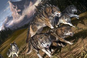 [Animal] Animais Atroz [I] Wolf_Pack_by_BenWootten