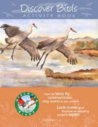 ACTIVITY BOOK ABOUT BIRDS!