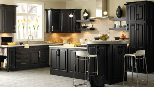 Black Kitchen Cabinets for a Contemporary Look  Best Kitchen Places