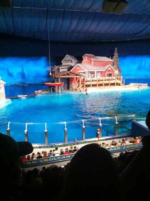 Zoo Dolphin Arena