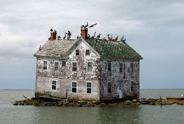 21. Holland Island in the Chesapeake Bay
