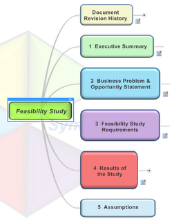 Conducting Feasibility Study and Developing Master Plan Write good a  history essay