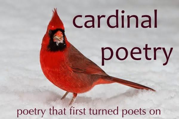 Cardinal Poetry