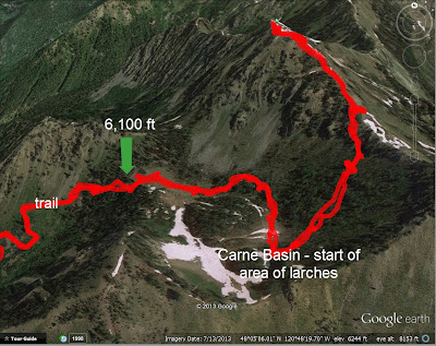 Trail Through Carne Basin to Carne Mountain and Area of Larch (Google Earth)
